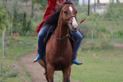 In Harmonie mit dem Pferd, dem Bogen und dem Ziel